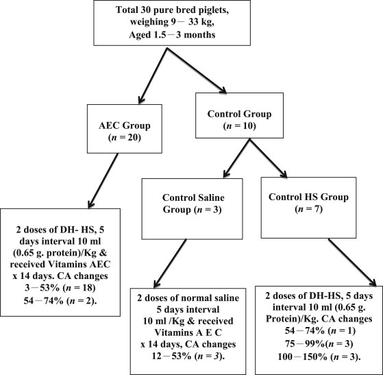 Role Of Antioxidants In Horse Serum Mediated Vasculitis In Swine