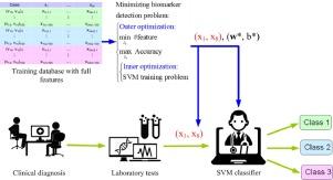 Detection of minimum biomarker features via bi-level