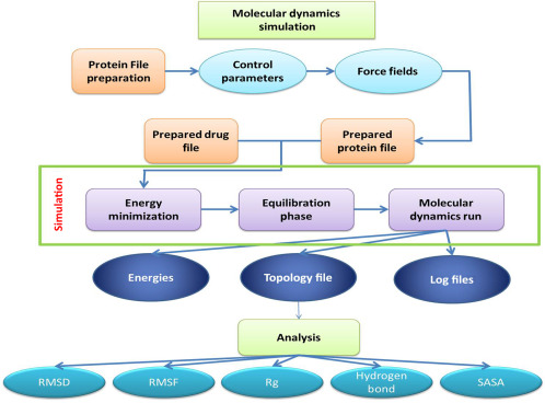 Molecular Dynamics: New Frontier in Personalized Medicine