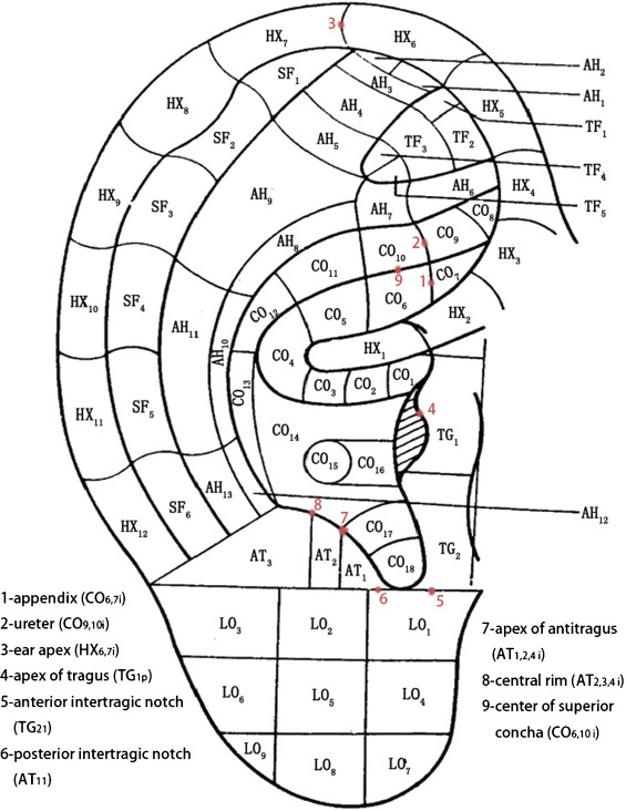 The similarities between the World Federation of Acupuncture