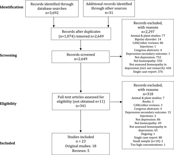 Homeopathy in the treatment of depression: a systematic review