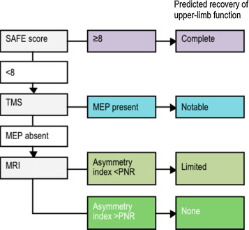 An update on predicting motor recovery after stroke