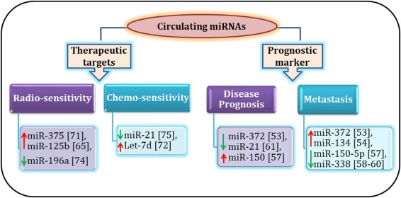 Liquid biopsy: miRNA as a potential biomarker in oral cancer