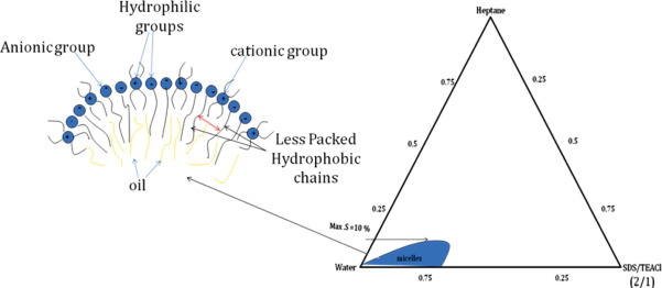 phase behavioral changes in sds association structures induced by Steam Pressure Enthalpy Diagram