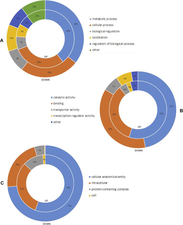 Transcriptomes of the interaction between Fusarium