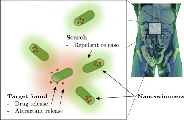 Molecular communication for drug delivery systems: A survey