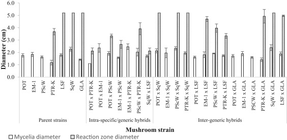 Biochemical characterization and efficacy of Pleurotus