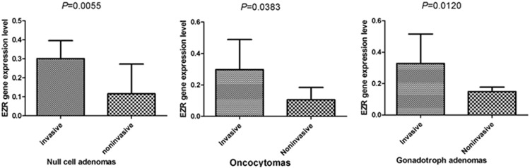 A Novel Invasive-Related Biomarker in Three Subtypes of