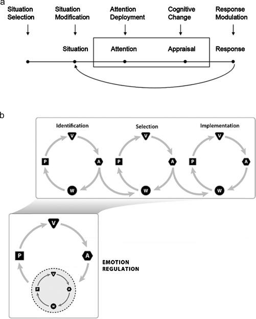 Neurocognitive bases of emotion regulation development in