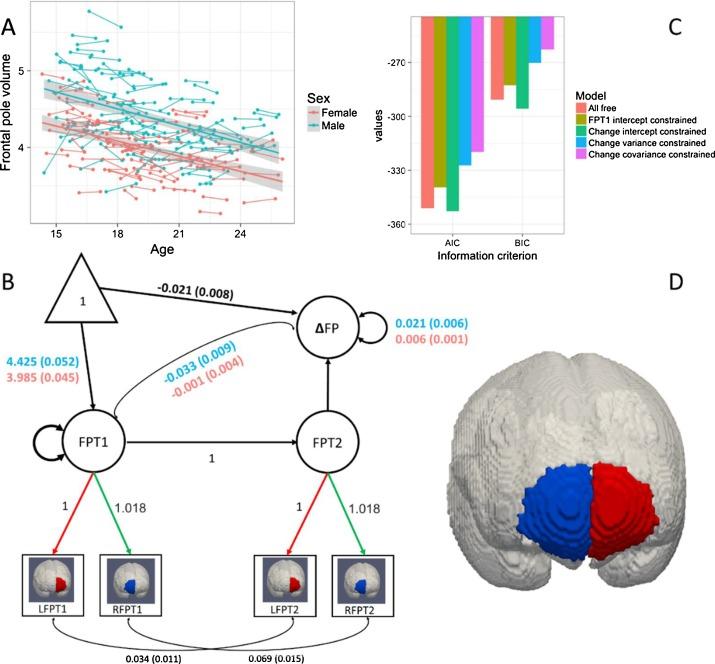 Developmental cognitive neuroscience using latent change score fig 9 ccuart Choice Image
