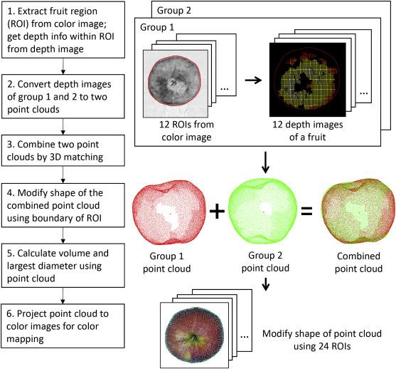 3D reconstruction of apple fruits using consumer-grade RGB-depth