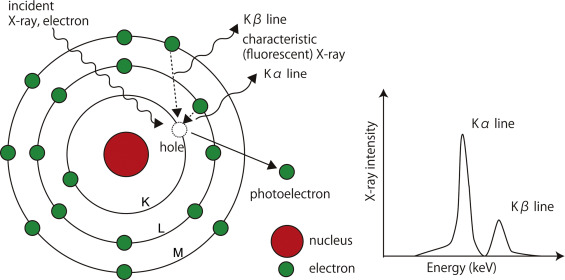 Applications of x ray fluorescence analysis xrf to dental and the mechanism of characteristic x ray generation ccuart Image collections