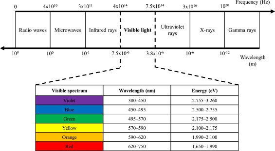 Effects of blue-light irradiation during dental treatment