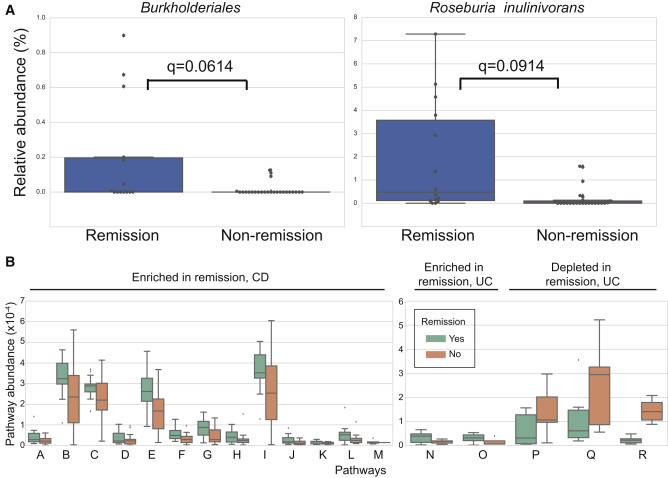 Gut Microbiome Function Predicts Response to Anti-integrin Biologic