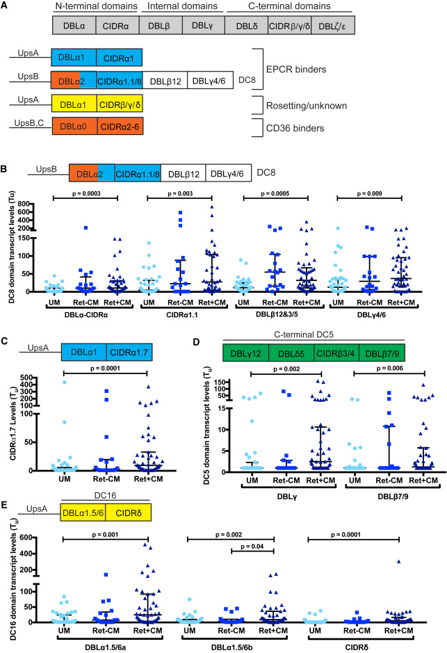 Linking EPCR-Binding PfEMP1 to Brain Swelling in Pediatric