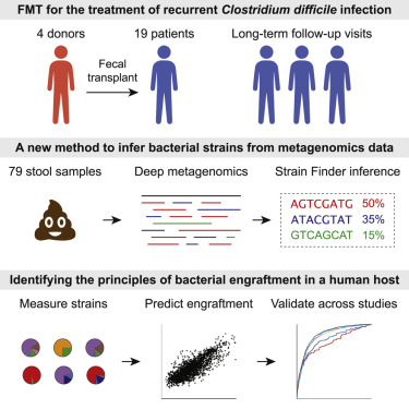 Strain Tracking Reveals the Determinants of Bacterial
