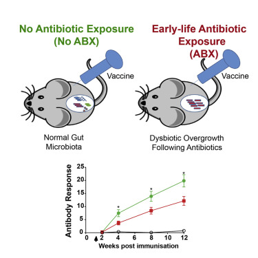 Dysbiosis antibiotics. Rheumatoid Arthritis: Natural Treatments for Pain-Free Living, Paperback