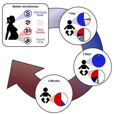 Mother-to-Infant Microbial Transmission from Different Body