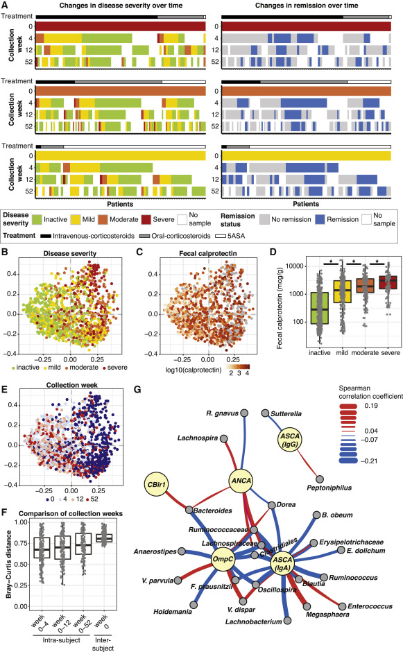 Compositional and Temporal Changes in the Gut Microbiome of