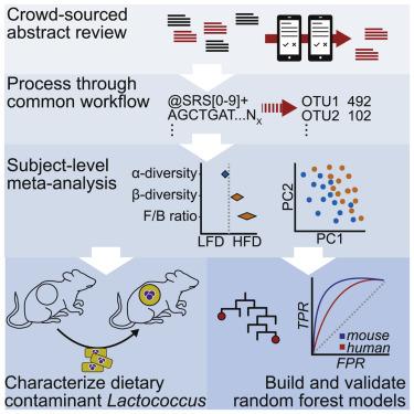 Meta-Analysis Reveals Reproducible Gut Microbiome
