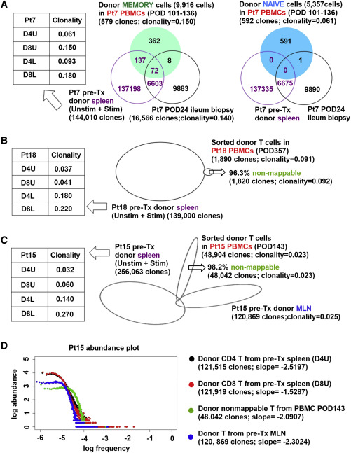 Human Intestinal Allografts Contain Functional Hematopoietic Stem