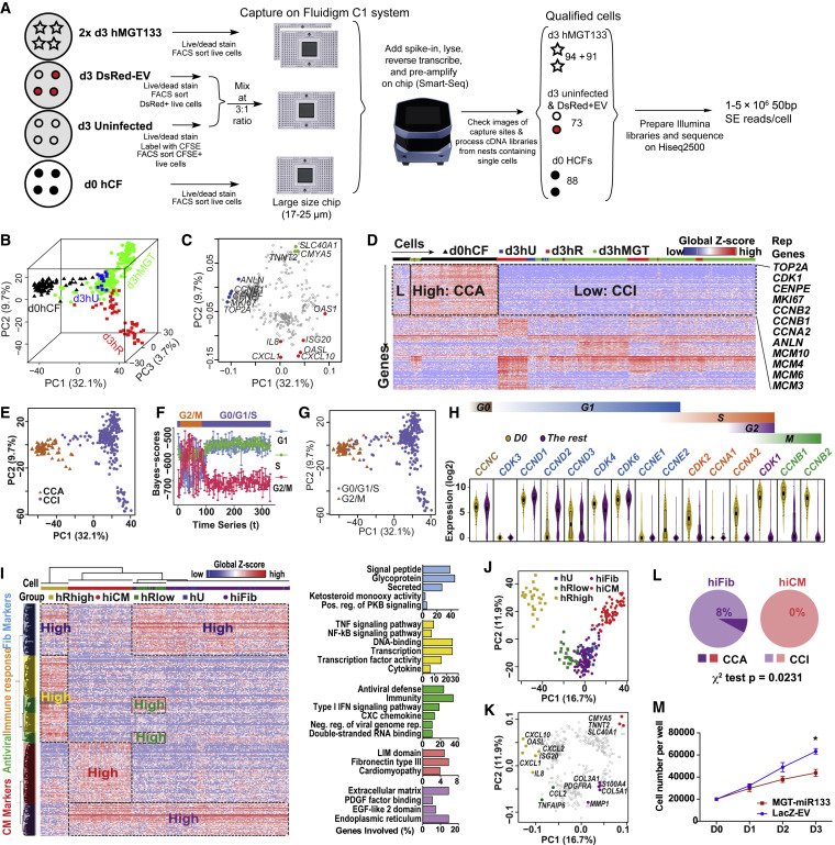 Single-Cell Transcriptomic Analyses of Cell Fate Transitions
