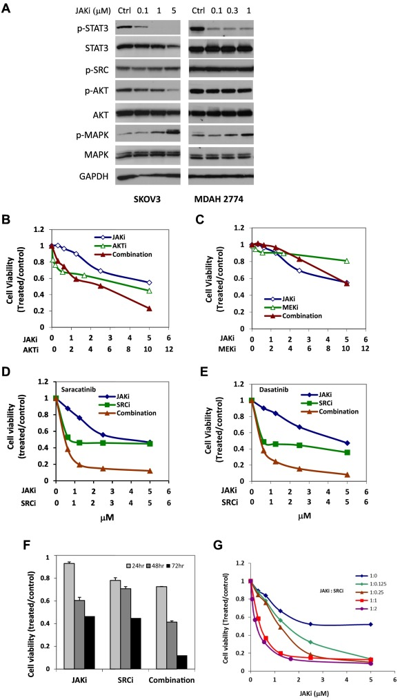 Increasing Antitumor Activity Of Jak Inhibitor By Simultaneous Blocking Multiple Survival Signaling Pathways In Human Ovarian Cancer Sciencedirect