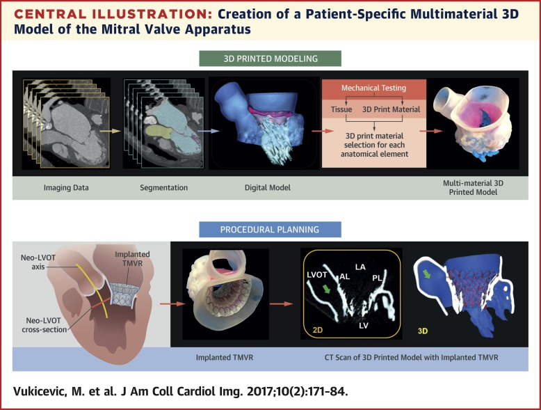 photograph about Vsd 190 Printable Form referred to as Cardiac 3D Printing and its Upcoming Guidance - ScienceDirect