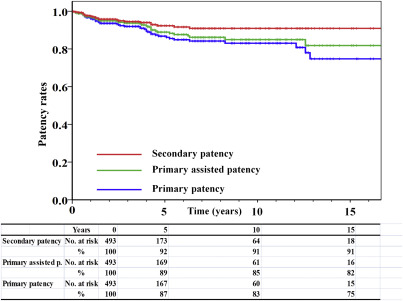 15-Year Patency and Life Expectancy After Primary Stenting Guided by
