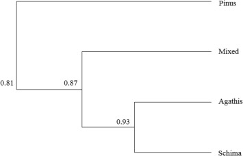 Response of bird community to various plantation forests in gunung figure 3 ccuart Images