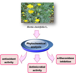 The biological activity of phytochemicals