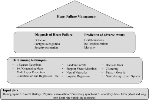 Heart Failure: Diagnosis, Severity Estimation and Prediction of