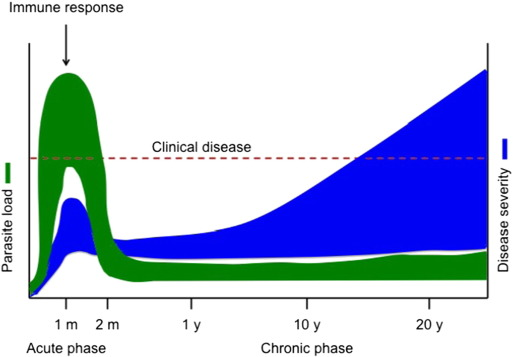 Chagas disease research and development: Is there light at the end