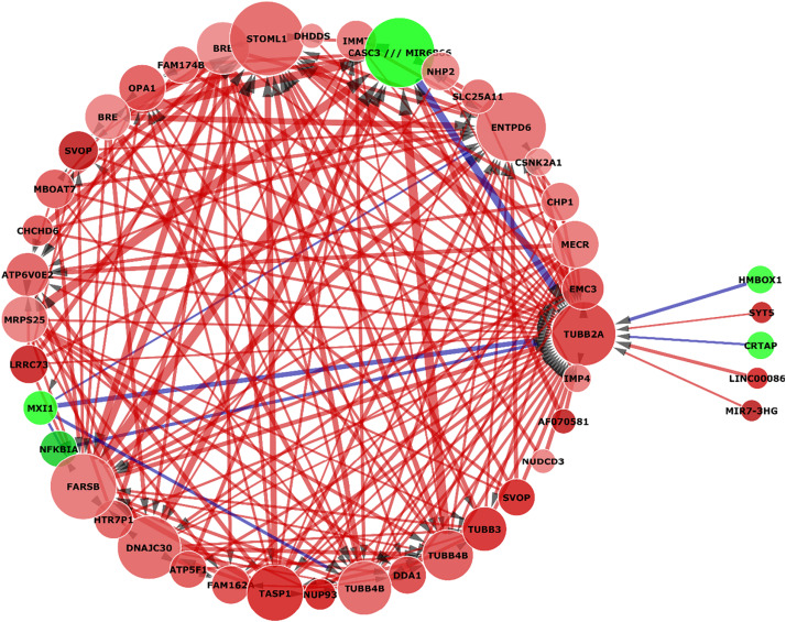 An Artificial Neural Network Integrated Pipeline for Biomarker Discovery Using Alzheimer's Disease as a Case Study