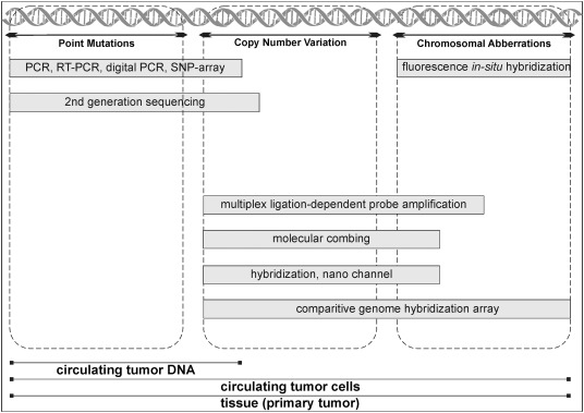 ctDNA and CTCs in Liquid Biopsy – Current Status and Where We Need to Progress