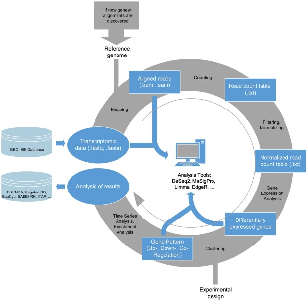 In Silico Prediction of Large-Scale Microbial Production Performance: Constraints for Getting Proper Data-Driven Models