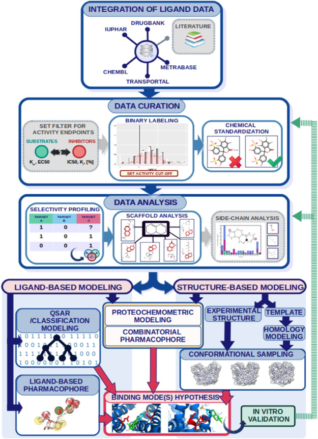Current Advances in Studying Clinically Relevant Transporters of the