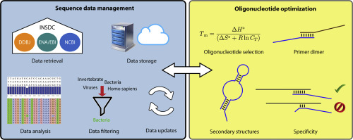 In Silico Design Of Dna Oligonucleotides Challenges And Approaches Sciencedirect