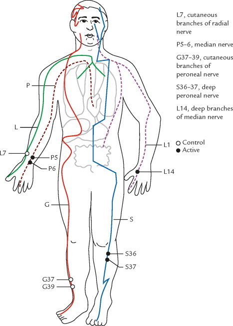 Defining meridians a modern basis of understanding sciencedirect diagram of meridians and acupuncture points or acupoints that have been studied with respect to the cardiovascular influence of electroacupuncture ccuart Image collections