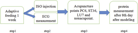 The Beneficial Effects of Electroacupuncture at PC6 Acupoints