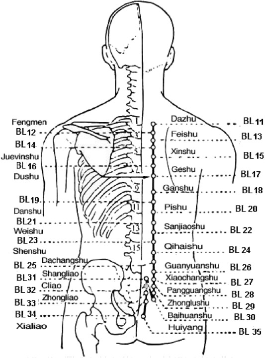 Ub 18 Acupuncture Point