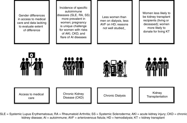 What We Do And Do Not Know About Women And Kidney Diseases Questions Unanswered And Answers Unquestioned Reflection On World Kidney Day And International Woman S Day Sciencedirect