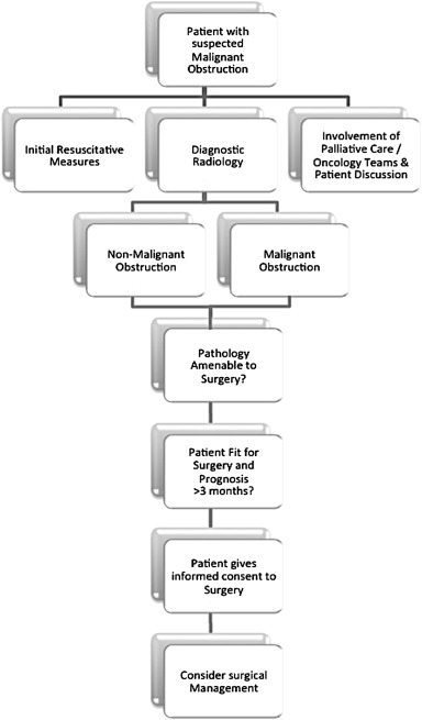 Management Of Intestinal Obstruction In Advanced Malignancy Sciencedirect