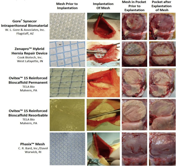 Contamination of hybrid hernia meshes compared to