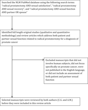 Radical prostatectomy and sexual dysfunction