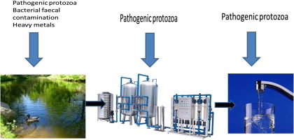 Watersmith Point of Use Drinking Water Filtration System