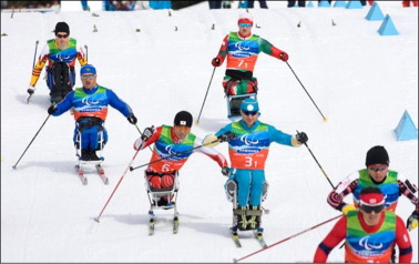 Analysis of the pushing phase in Paralympic cross-country