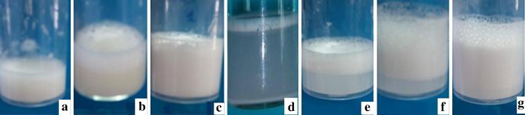 Potential application of Bacillus subtilis SPB1 lipopeptides