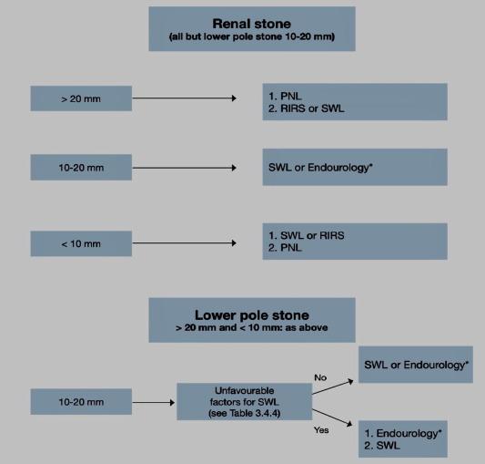 epidemiology pathophysiology and management of uric acid