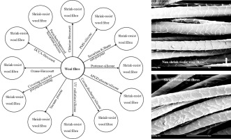 A Review Of The Sustainable Methods In Imparting Shrink Resistance To Wool Fabrics Sciencedirect